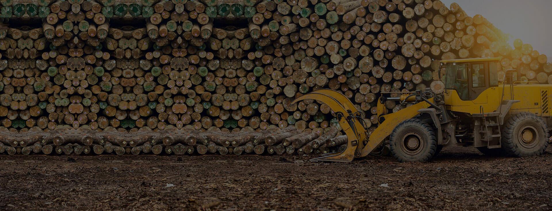 slider-agriculture-forestry